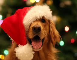 Feliz Natal 3