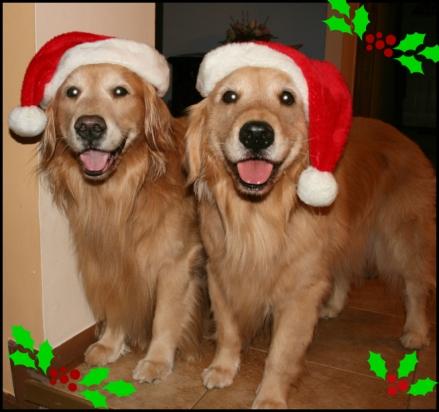 Feliz Natal 4.jpg